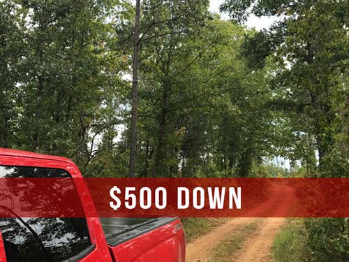 $500 Down on Rec Land With Creek : Ava : Douglas County : Missouri