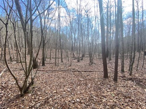 5.00+/- Acres Wooded Property : South Pittsburg : Marion County : Tennessee