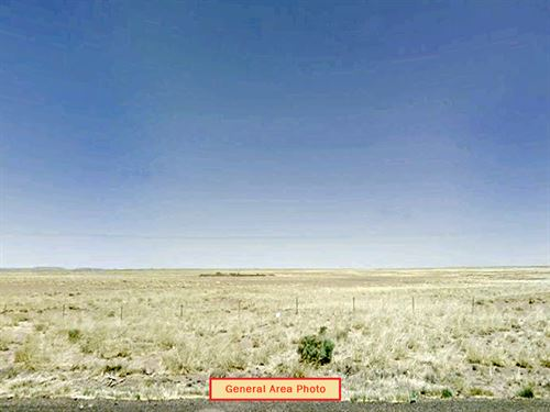 Large Open Rural Residential : Holbrook : Navajo County : Arizona