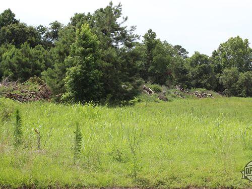 .96 Acres in Angleton TX : Angleton : Brazoria County : Texas