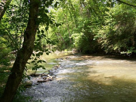 235+/- Acres Outdoor Paradise : Montevallo : Shelby County : Alabama