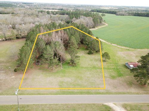 2.68 Acre Homesite, Between : Hartford : Geneva County : Alabama