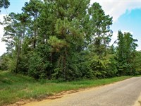 Wooded Lot With Paved Road Frontage : Cleveland : Liberty County : Texas