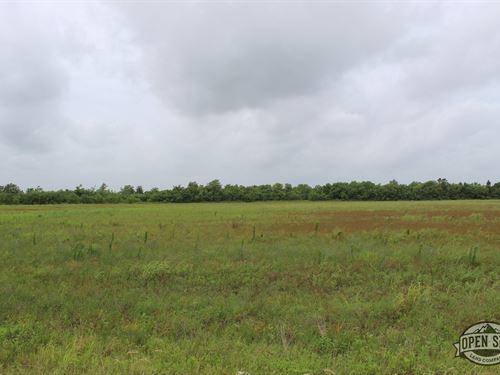 Time For New Memories at 0.9 Acres : Angleton : Brazoria County : Texas
