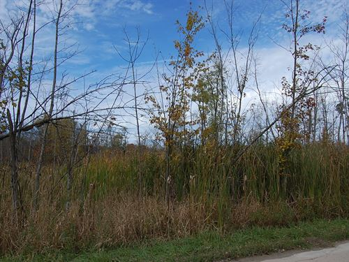 Beautiful Rural Residential : Lakeview : Montcalm County : Michigan