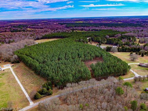 18 Wooded Acres in Walnut Grove : Roebuck : Spartanburg County : South Carolina