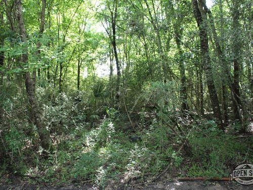 Incredible 12.46 Acres Land in Rusk : Rusk : Cherokee County : Texas