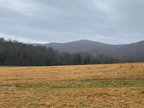 550+/- Acres Hardwoods / Pasture : McMinnville : Warren County : Tennessee