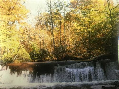 Cane Creek Tract 940 Acres : Graysville : Jefferson County : Alabama