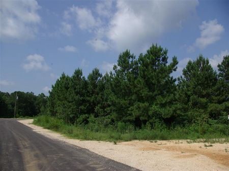 9.9 Acres Homes Only Creek Frontage : Odenville : St. Clair County : Alabama