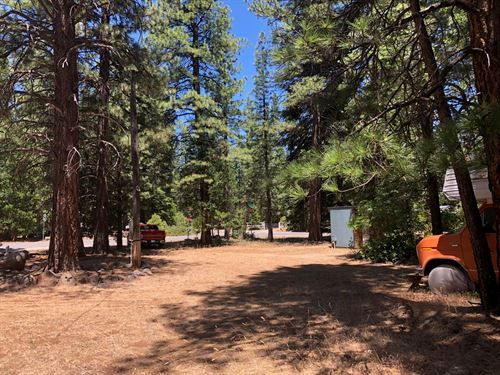 Hiking, Fishing, Hunting Your : Susanville : Lassen County : California