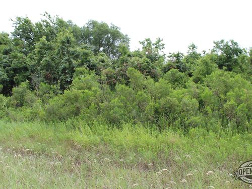 These 0.28 Acres in Bullard, TX : Bullard : Cherokee County : Texas