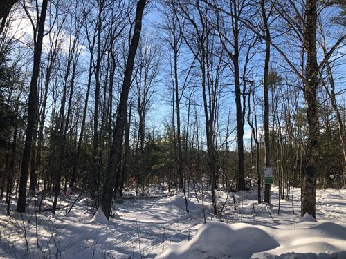 Land Lot Near Sebago Lake, Maine : Sebago Lake : Cumberland County : Maine
