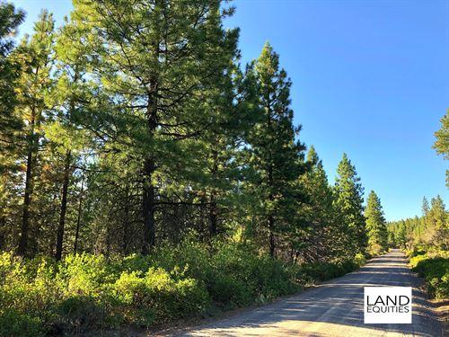 Beautiful Wooded Lot With Power : Bonanza : Klamath County : Oregon