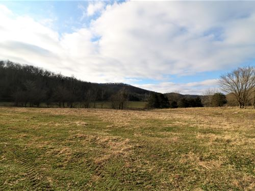 Farm/Hunting Property 174.75 Acres : Monticello : Wayne County : Kentucky