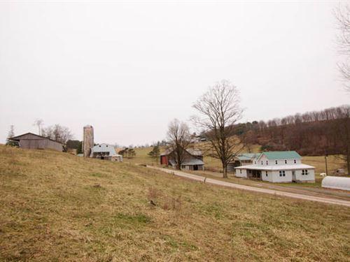 Organic Dairy Farm on 35+/- Acres : Millville : Columbia County : Pennsylvania