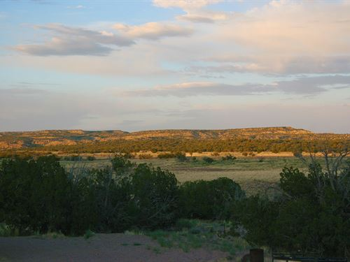 81 Acre Wilderness Ranch With Home : Saint Johns : Apache County : Arizona