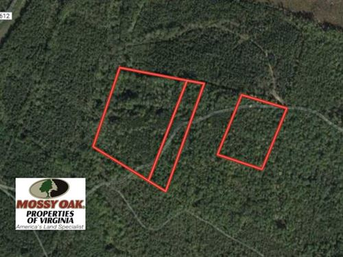 19.2 Acres of Wooded Land For Sale : Prospect : Spotsylvania County : Virginia