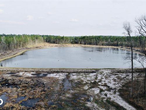 Spring Creek Impoundment : Aurora : Beaufort County : North Carolina