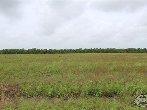 Great 0.80 Acre Property Inangleton : Angleton : Brazoria County : Texas