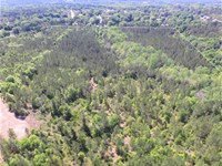 Wooded Acreage Near Ft Rucker : Ozark : Dale County : Alabama