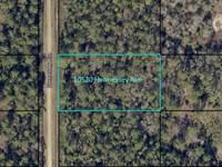 Mobile Home Friendly Flagler Estate : Hastings : Saint Johns County : Florida