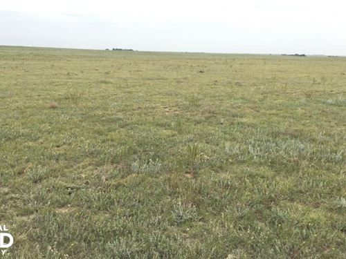 Kiowa County Grass Land For Sale : Arlington : Kiowa County : Colorado