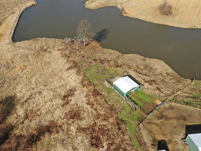 Sells Without Reserve This Tra : Troy : Obion County : Tennessee