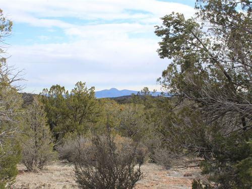 Mountain Acreage Wildlife Seligman : Seligman : Yavapai County : Arizona