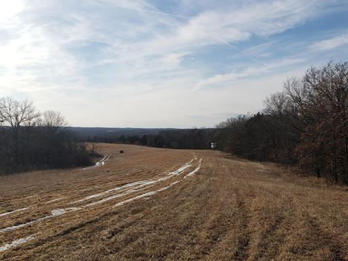 509 Acres M/L Sullivan County, MO : Milan : Sullivan County : Missouri