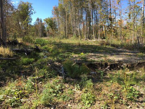 Kenduskeag Stream Recreational Land : Corinth : Penobscot County : Maine