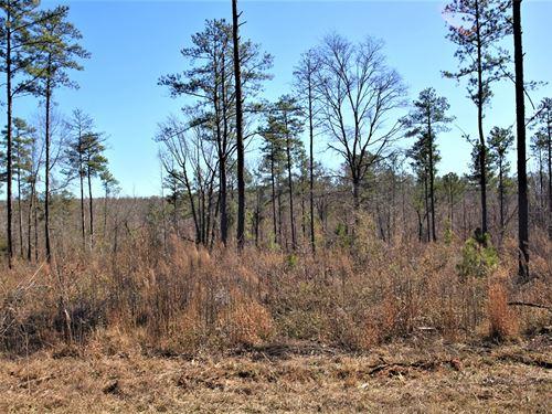 Recreational and Hunting Property : Gray : Jones County : Georgia