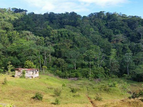 222 Ac, Pasture, Woods, Streams : Guayacan : Costa Rica