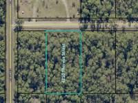 Flagler Estates No Deed Restriction : Hastings : Saint Johns County : Florida