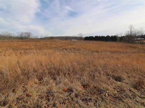 Conquer Hill Rd, 5 Acres : Byesville : Guernsey County : Ohio