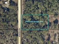 Flagler Estates Awaits Your Vision : Hastings : Saint Johns County : Florida