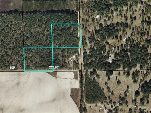 10 Ac For Hunters 778447 : Branford : Gilchrist County : Florida
