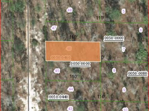 .2 Acres in Putnam County FL : Hawthorne : Putnam County : Florida