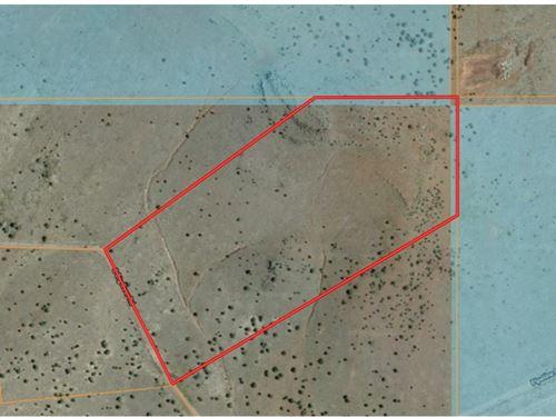 Mountain Land Borders Public Land : Williams : Coconino County : Arizona