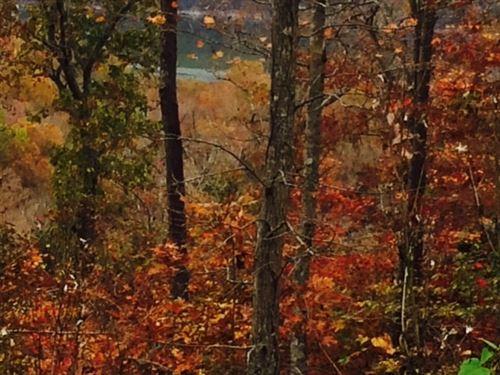 Lake View Land, Albany, Kentucky : Albany : Clinton County : Kentucky