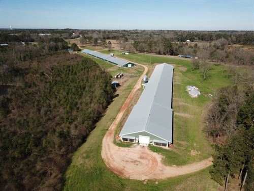 Kings Poultry Farm : McKenzie : Butler County : Alabama