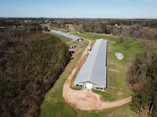 Kings Poultry Farm : McKenzie : Butler County : Alabama