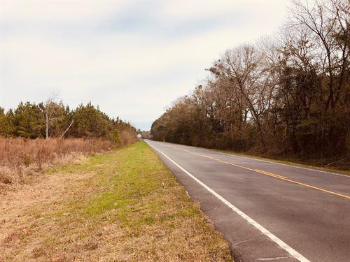 Newington Tract : Newington : Screven County : Georgia