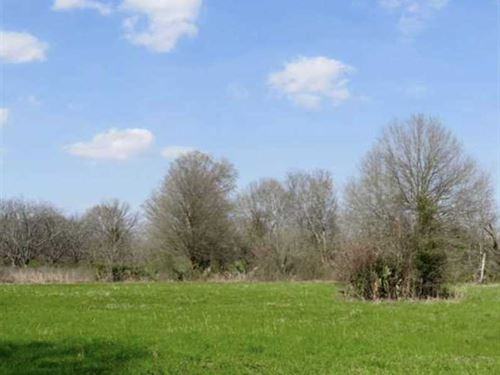 28 Acres of Fine Tensas Parish Hun : Newelltom : Tensas Parish : Louisiana