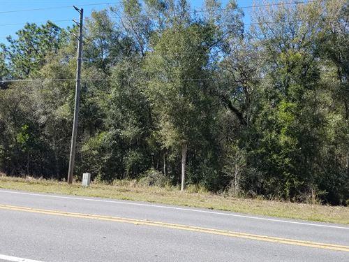 4.45 Acres in Floral City : Floral City : Citrus County : Florida