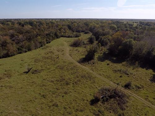 90+ Acres Hwy 21 North Zulch : North Zulch : Madison County : Texas