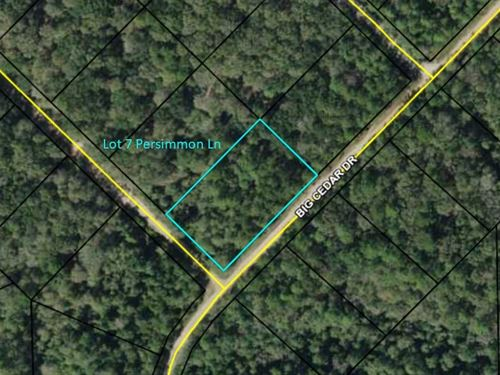 Corner Lot in Compass Lake Hills : Marianna : Jackson County : Florida