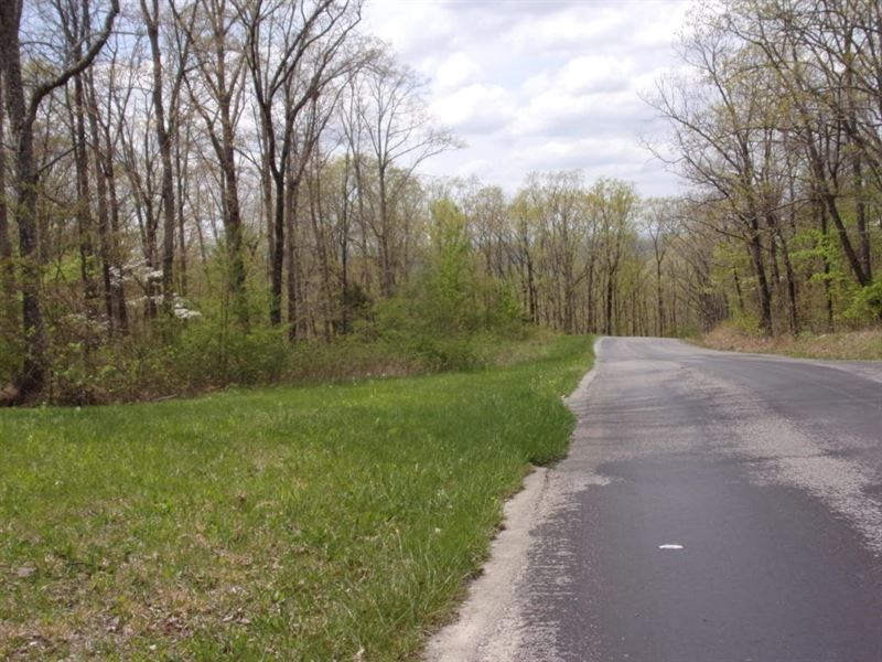 Nice Land, Level, Paved Frontage : Pikeville : Bledsoe County : Tennessee