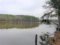 4.5 Acres in Chester, Chester : Chester : South Carolina