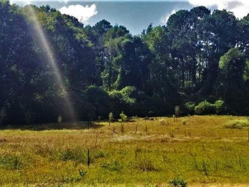 Mount Olive Development or Estate : Mount Olive : Jefferson County : Alabama